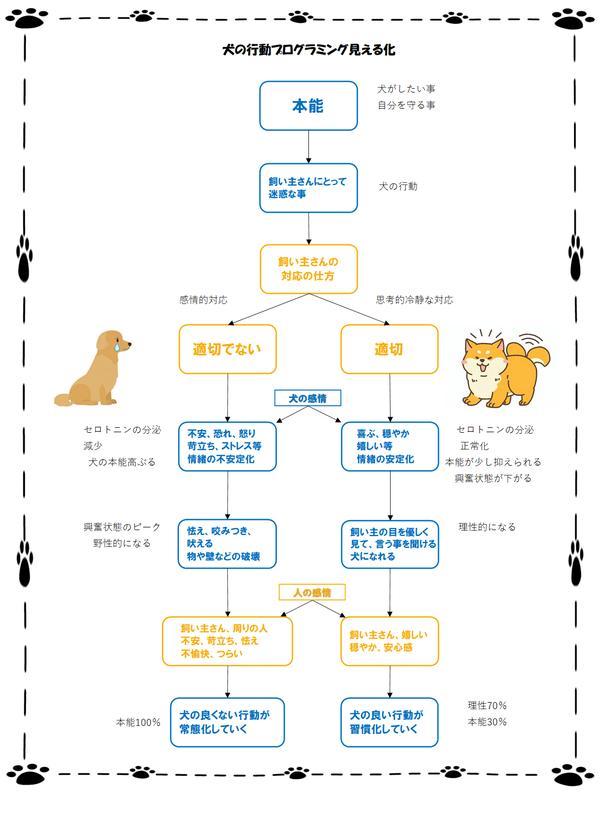 飼い主さんの対応によって変わる犬の取り扱い方